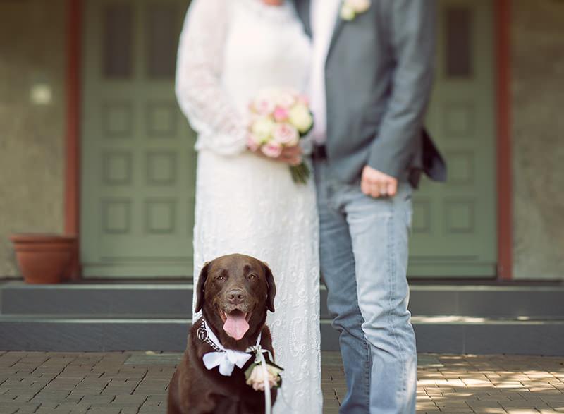 11_Hochzeitsfotograf_Kremmen_Ziethen_Hund_Heiraten