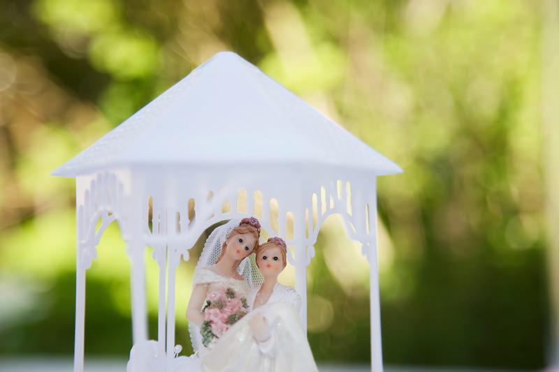 19_gleichgeschlechtliche_Hochzeitsfotograf_Lakeside_Ganzinweise_lesbische